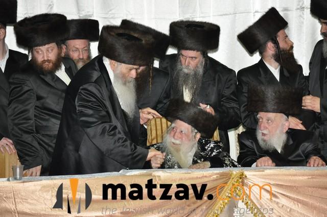 Erlauer Rebbe (437)