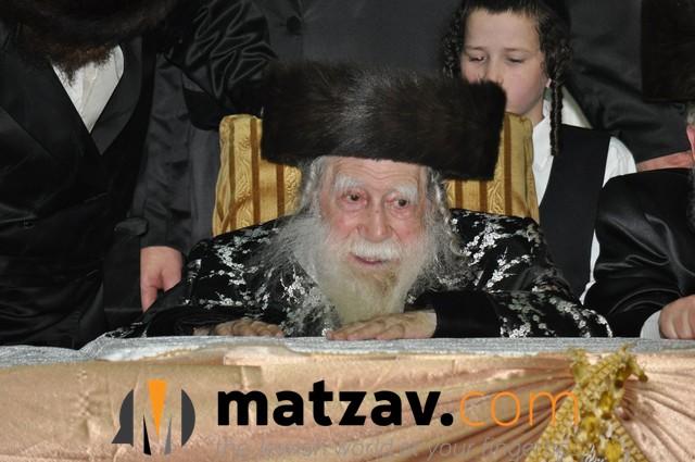 Erlauer Rebbe (438)
