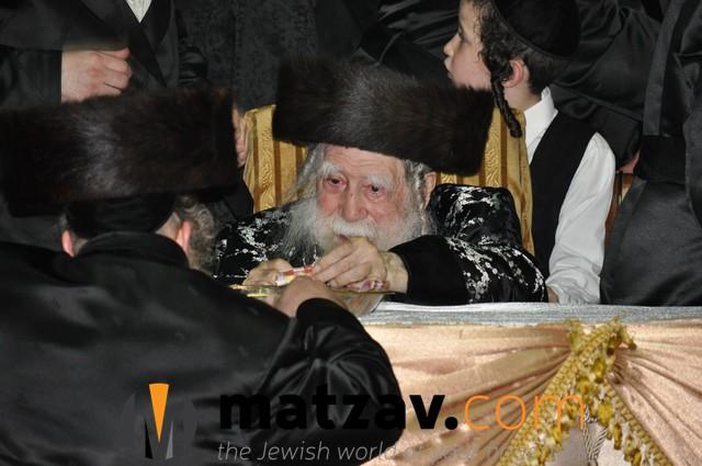 Erlauer Rebbe (439)