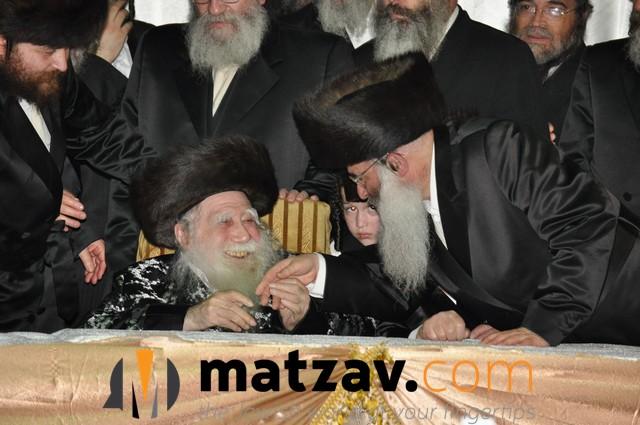 Erlauer Rebbe (440)