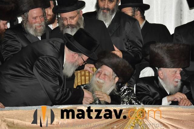 Erlauer Rebbe (441)