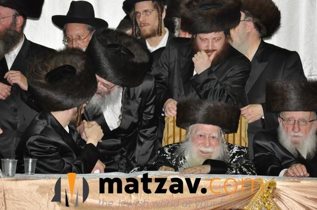 Erlauer Rebbe (446)