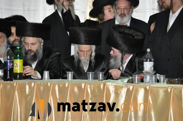 Erlauer Rebbe (448)