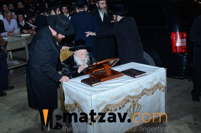 Erlauer Rebbe (456)
