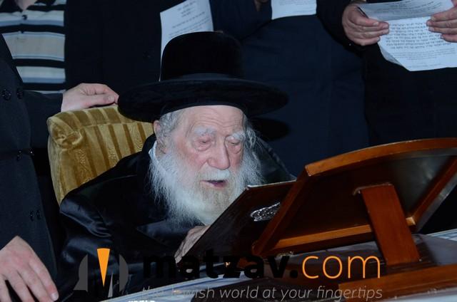 Erlauer Rebbe (458)