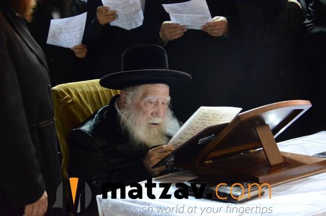 Erlauer Rebbe (459)