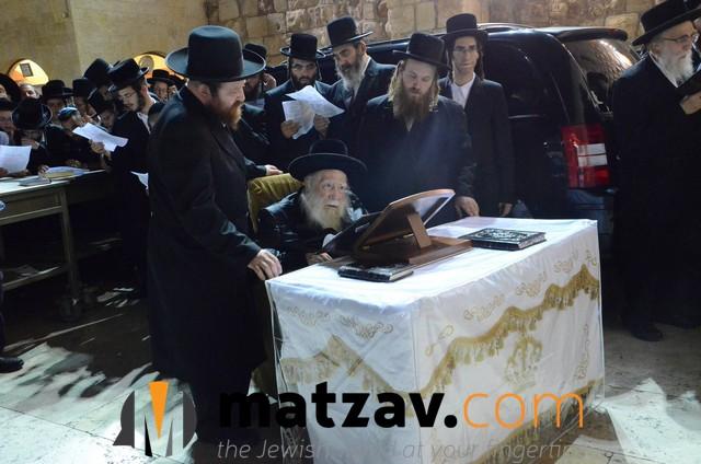 Erlauer Rebbe (460)