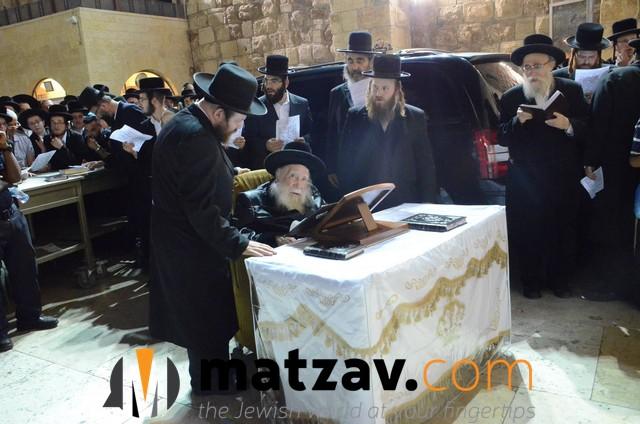 Erlauer Rebbe (462)