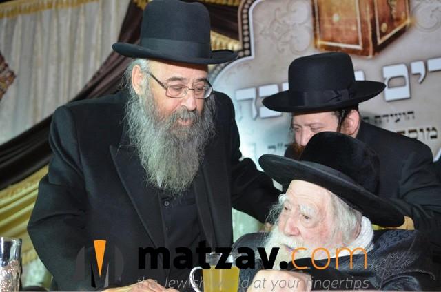 Erlauer Rebbe (463)
