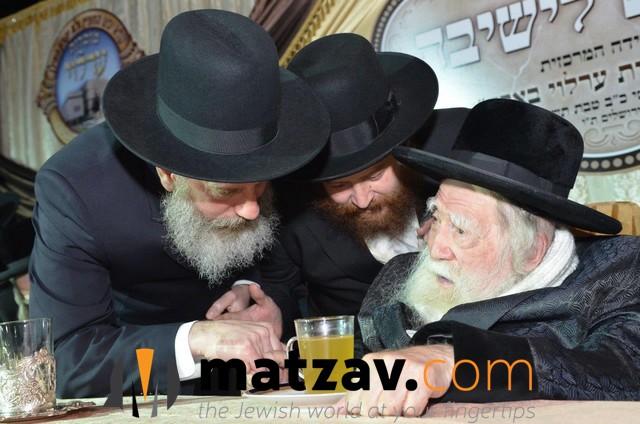 Erlauer Rebbe (465)