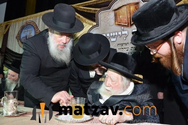 Erlauer Rebbe (467)