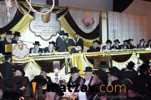Erlauer Rebbe (469)