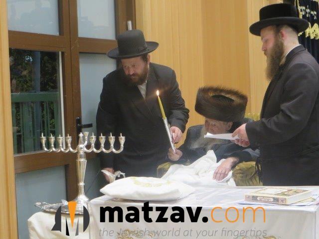 Erlauer Rebbe (47)