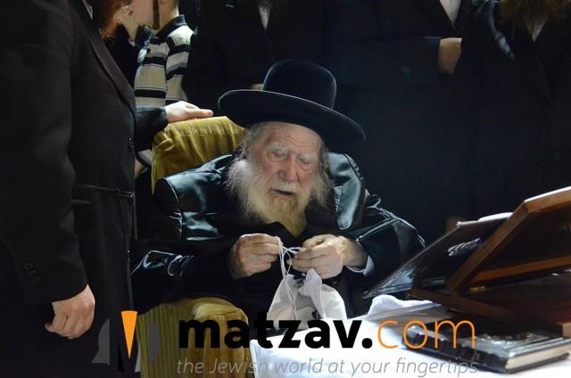 Erlauer Rebbe (471)