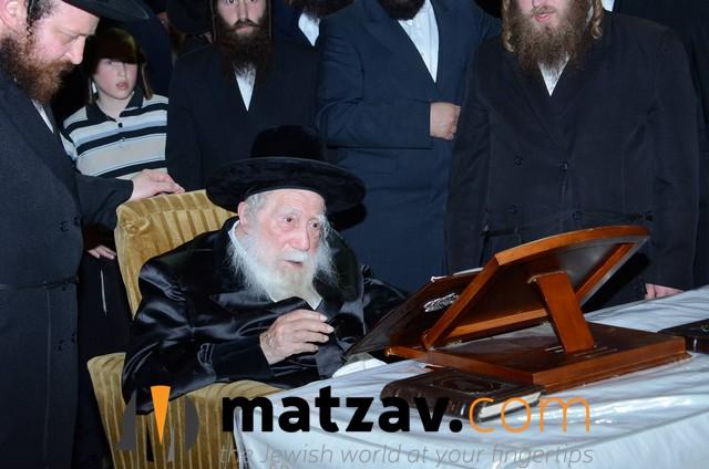 Erlauer Rebbe (472)