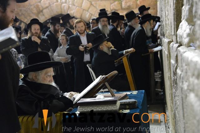Erlauer Rebbe (485)