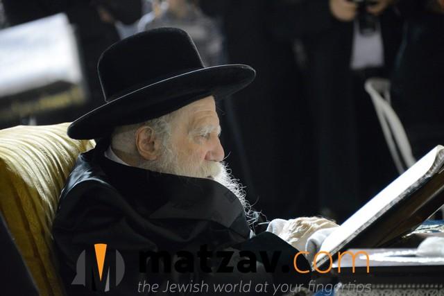 Erlauer Rebbe (487)