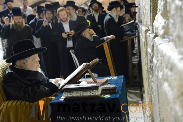 Erlauer Rebbe (488)
