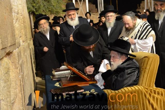 Erlauer Rebbe (489)