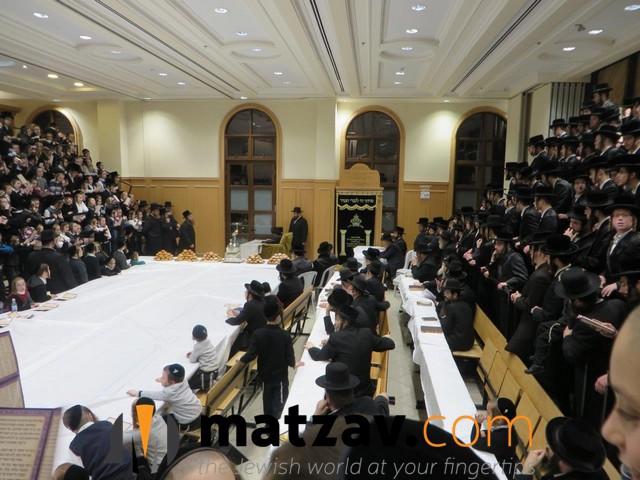 Erlauer Rebbe (49)