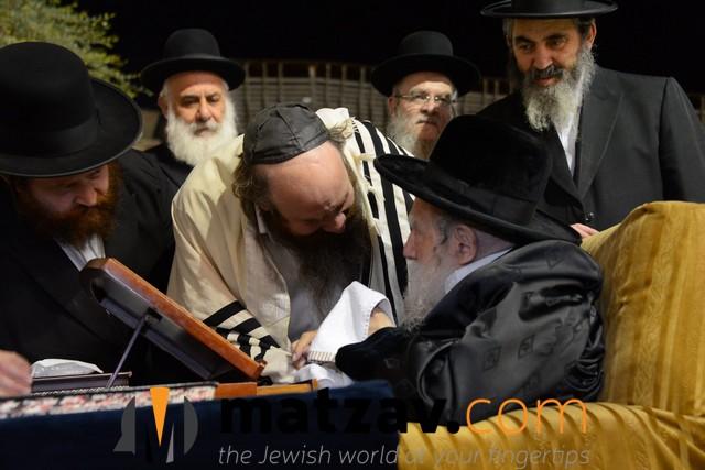 Erlauer Rebbe (491)