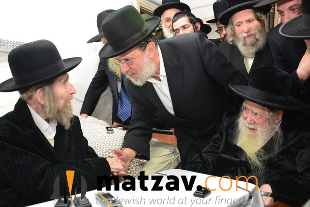 Erlauer Rebbe (502)