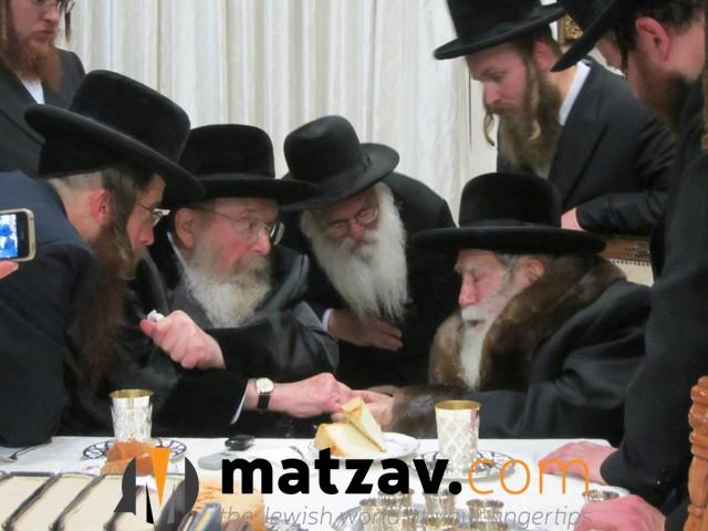 Erlauer Rebbe (508)
