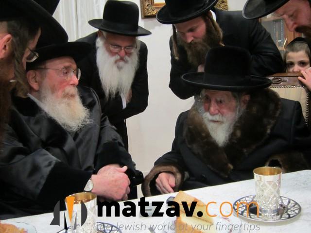 Erlauer Rebbe (510)