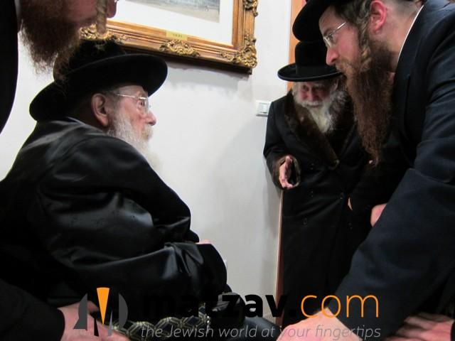 Erlauer Rebbe (514)