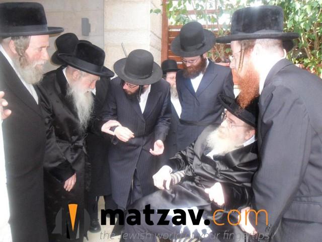 Erlauer Rebbe (517)