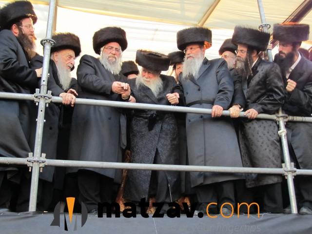 Erlauer Rebbe (535)