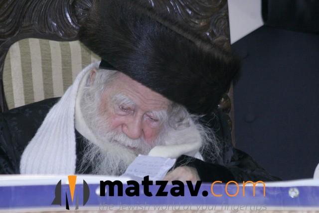 Erlauer Rebbe (537)