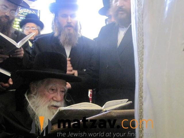 Erlauer Rebbe (54)