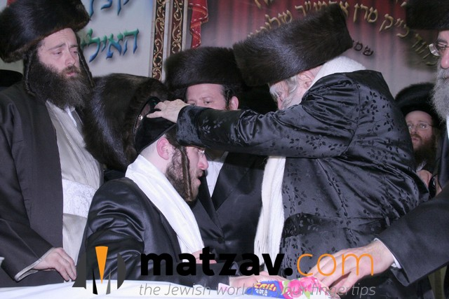 Erlauer Rebbe (540)