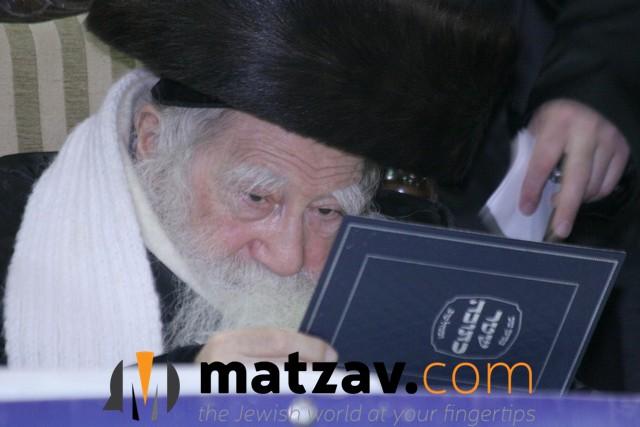 Erlauer Rebbe (541)