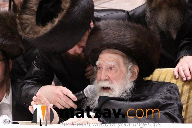 Erlauer Rebbe (543)