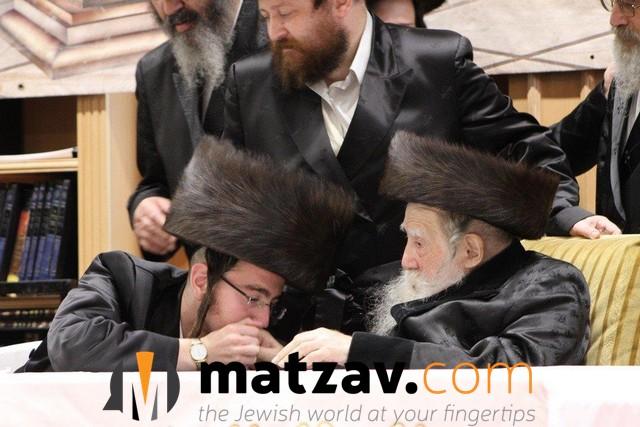 Erlauer Rebbe (547)