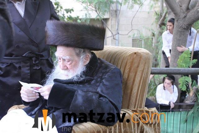Erlauer Rebbe (550)