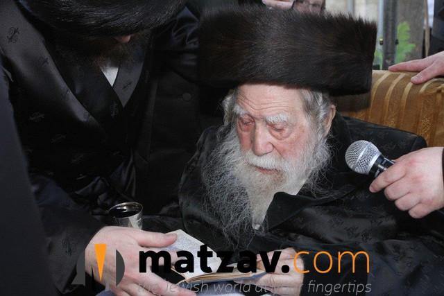 Erlauer Rebbe (552)