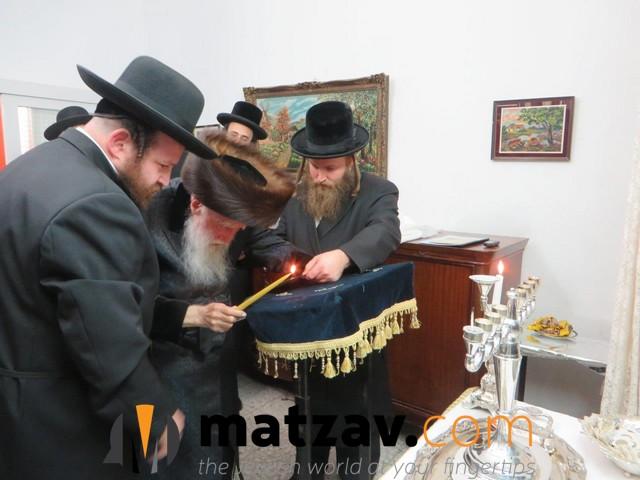 Erlauer Rebbe (556)