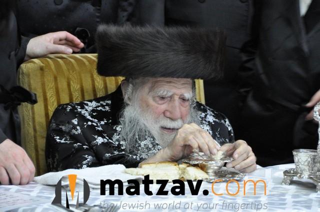 Erlauer Rebbe (557)