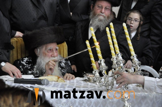 Erlauer Rebbe (559)