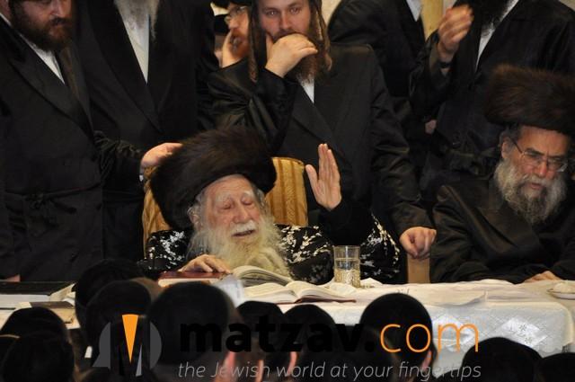 Erlauer Rebbe (561)