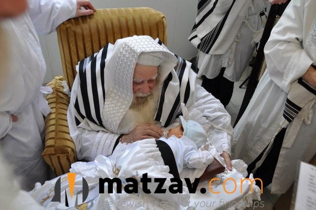 Erlauer Rebbe (563)