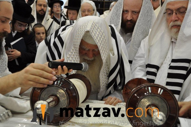 Erlauer Rebbe (564)