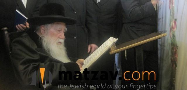 Erlauer Rebbe (59)