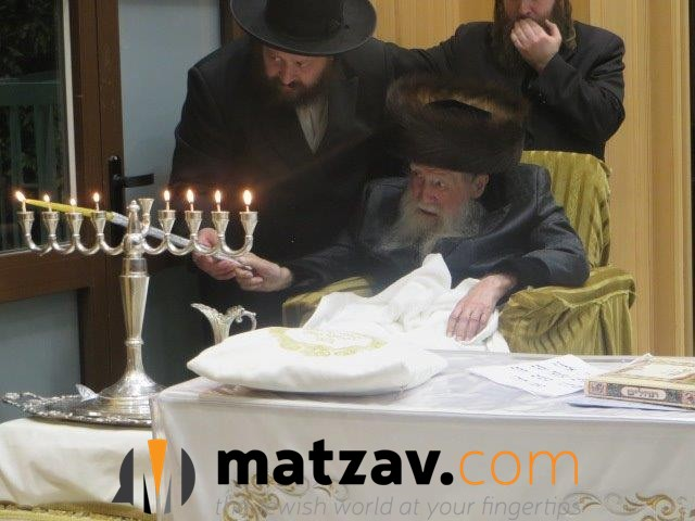 Erlauer Rebbe (62)