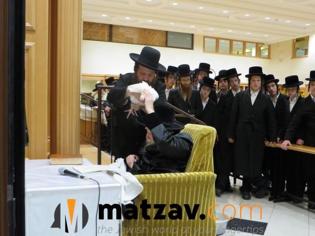 Erlauer Rebbe (64)
