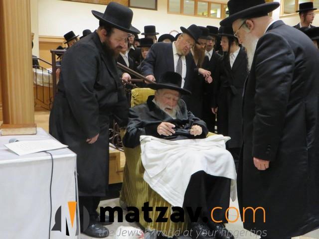 Erlauer Rebbe (66)