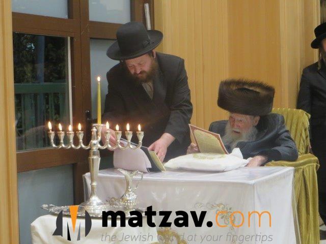 Erlauer Rebbe (68)